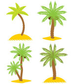 Set of various palm trees. Objects isolated. Vector — Stock Vector
