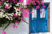 Haustüre mit Bouganvilla — Stock Photo