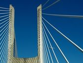 Ponte Vasco da Gama — Stock Photo