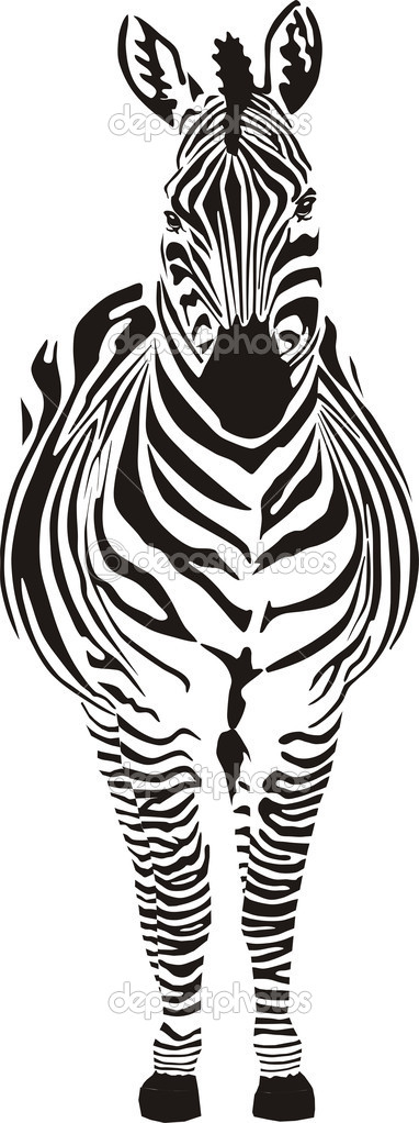 Zebra - vector illustration front view, black and zero — Stock Vector #5518479
