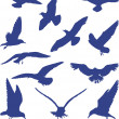 Birds, seagulls in blue silhouettes — Stock Vector #6421560