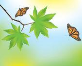 Akçaağaç yaprakları ve kelebekler — Stok Vektör