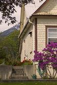 Cottage garden in spring — Stock Photo