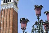 Venetian lantern and pigeons — Stock Photo