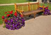 Empty Bench with Flowers — Stock Photo