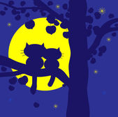 Cats on a tree — Stock Photo