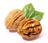 Walnuts with leaf — Stock Photo