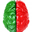 Brain - 3d - Stock Photo