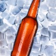 Beer and ice around - Stock Photo