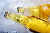 Bottles of beer in ice — Stock Photo