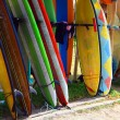 Stock Photo: Surf board