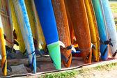 Surf board — Stock Photo
