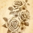Freehand drawing rose 02 — Stock Photo