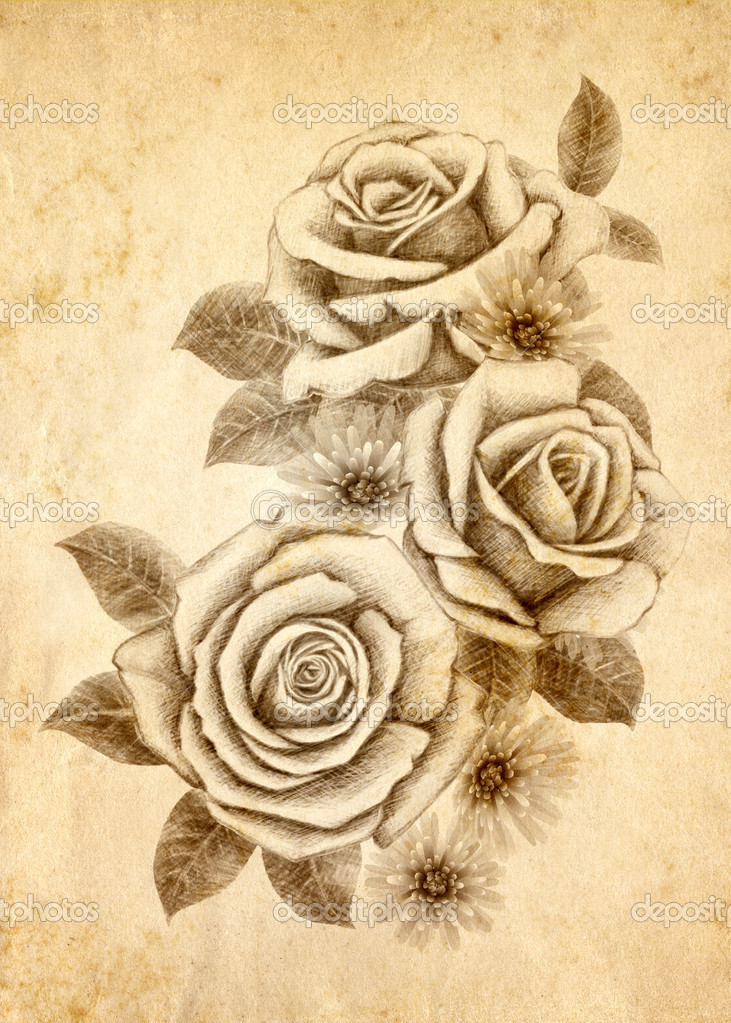 Cute Rose Drawings