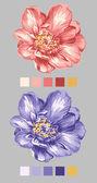 Hand drawn flower 02 — Stock Photo