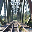 Close-up railway bridge — Stock Photo #5417531