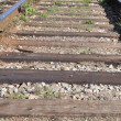 Close-up railway - Stock Photo