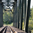 Close-up railway bridge — Stock Photo #5463612