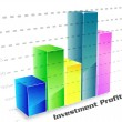 Investment profit column chart — Stock Photo