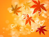 Abstract blur bubble and maple leaf background — Foto de Stock