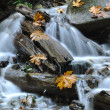 Stock Photo: Waterfall in Harrison BC Canada