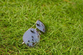 Sunglasses on the grass — Stock Photo