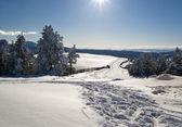 Dia de inverno agradável em sarikamis — Foto Stock