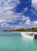 The boats in blue lagoon near Saona island. — Stock Photo