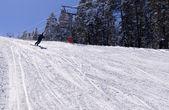 Skiing in Sarikamis — Stock Photo