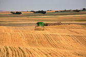 Farmer combining his crop in scenic Saskatchewan — Stock Photo
