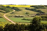 A country road in sceneic Saskatchewan — Stock Photo