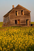 Weathered old farm house in scenic Saskatchewan — Stock Photo