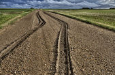 Mud Tire Tracks — Stock Photo