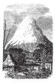 Chimborazo Volcano in Ecuador, during the 1890s — Stock Vector