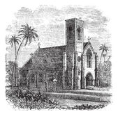 Saint Lucia Cathedral, in Colombo, Sri Lanka, vintage engraving — Stock Vector