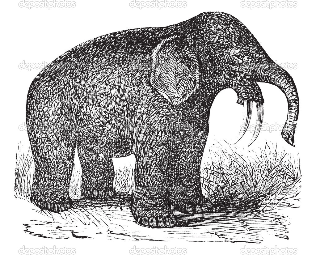 Dinotherium or Hoe Tusker or Dinotherium giganteum, vintage engraving. Old engraved illustration of a Dinotherium. — Stock Vector #6730588