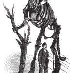 Hadrosaurus skeleton vintage engraving — Stock Vector #6747391