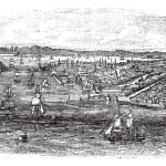View of havana city, Cuba vintage engraving — Stock Vector #6747530