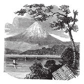Mount Fuji in Japan vintage engraving — Stock Vector
