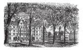 Harvard University, Cambridge, Massachussets vintage engraving — Stock Vector