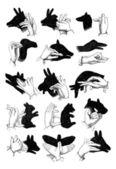 Stíny z ruky. -sobů, kamzíky, ovce, velbloud, prase, goo — Stock vektor