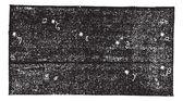 Grande Ourse (Ursa major), vintage engraving — Stock Vector