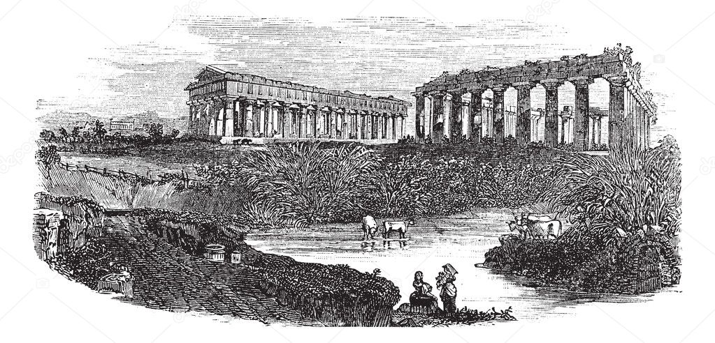 The ruins of temples at Paestum in Campania, Italy, during the 1890s, vintage engraving. Old engraved illustration of the ruins of temples with cattles in a pon — Stock Vector #6755859