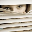 Looking Through the Shutters — Stock Photo