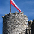 Old castle ruins in Poland in Europe — Stock Photo #5788068