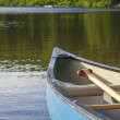 Stock Photo: Boat Oar