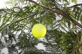 Tennis Christmas — Stock Photo