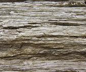 Aged Wood — Stock Photo