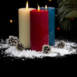 图库照片: Snow Covered Candles at Night with cones- Vertical