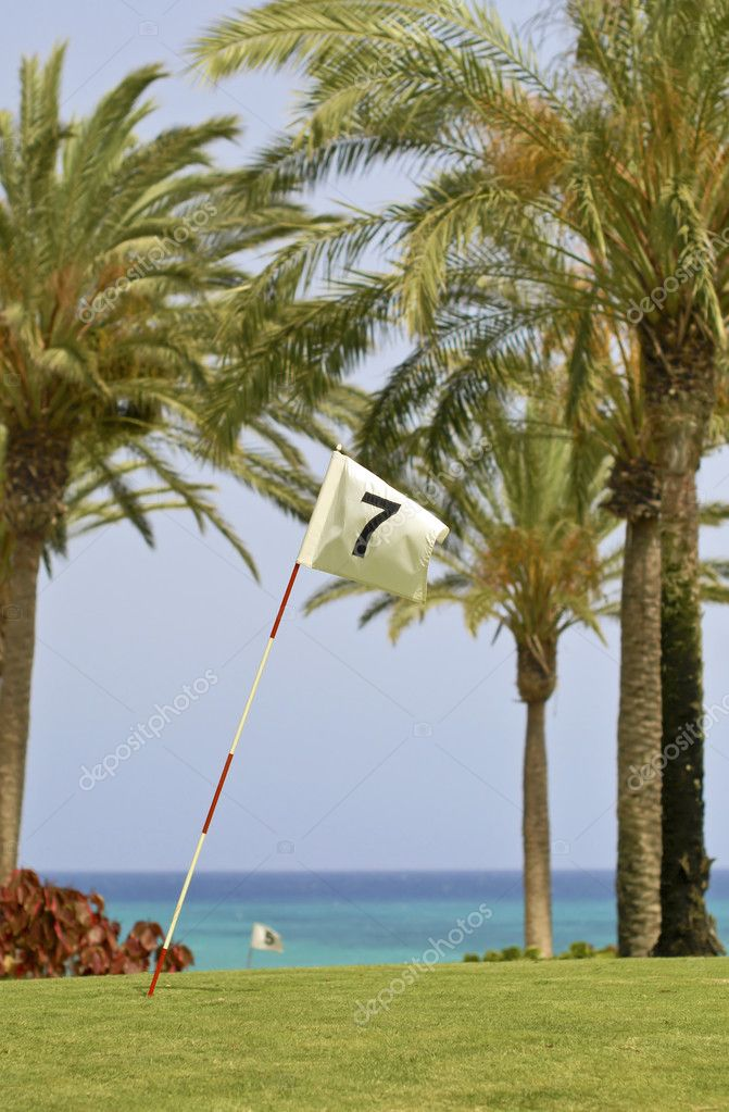 Golf course flag on the background of palms and sea  Stock Photo #6142141